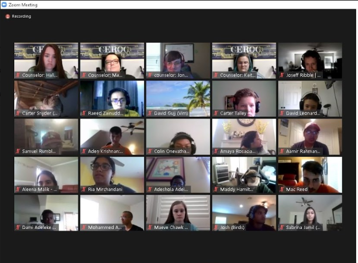 Virtual Cyber Discovery Camp Attendees