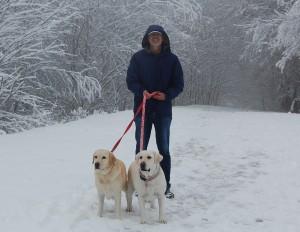 snowdogs_1